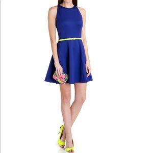 Ted Baker Preeny Full Skirted Dress